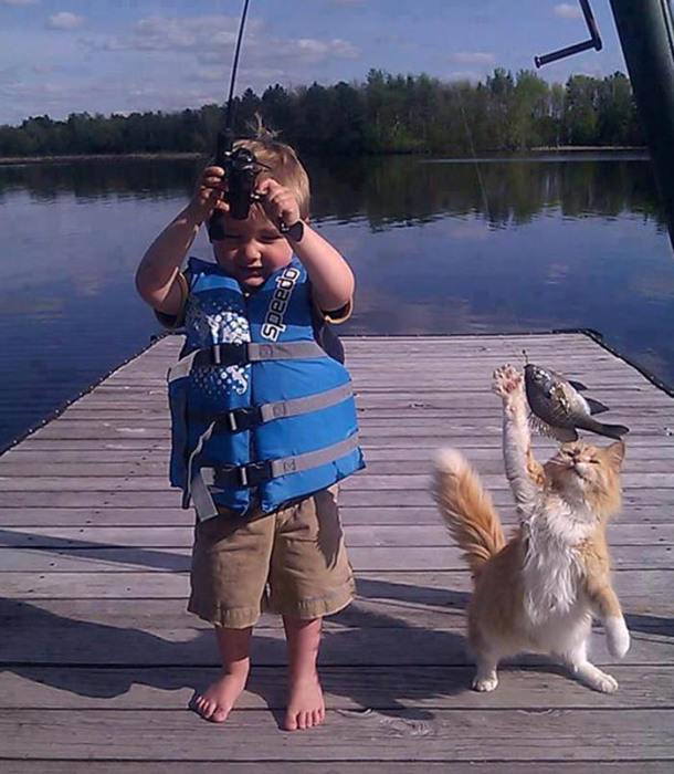 Котик и пойманная рыба.
