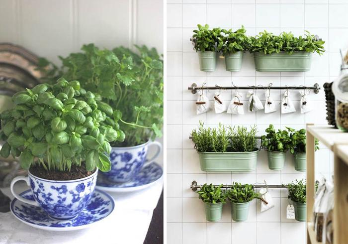 10 интересных идей для украшения кухни цветами.