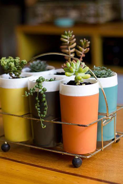 Растения в высоких стаканах.