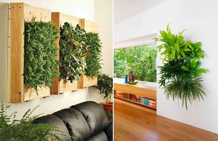 Как украсить интерьер растениями в подвесных горшках.