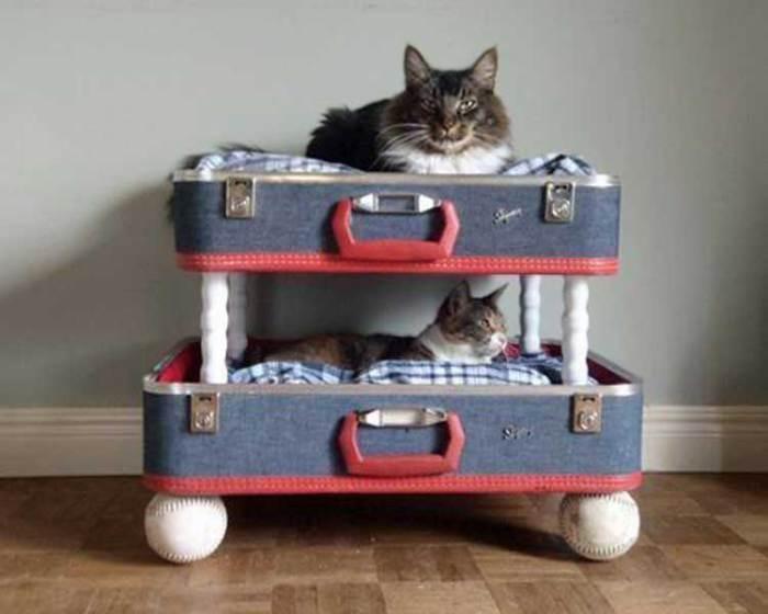 Забавная двухъярусная кроватка для кота.