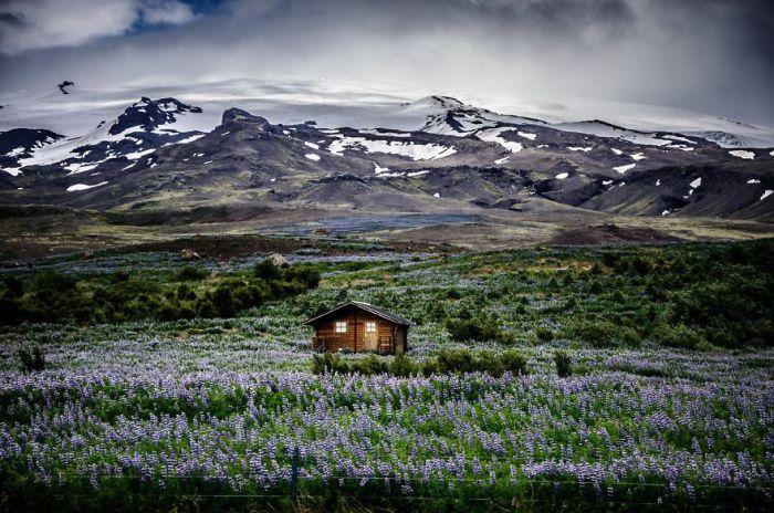 Дом на поле среди гор, Исландия.