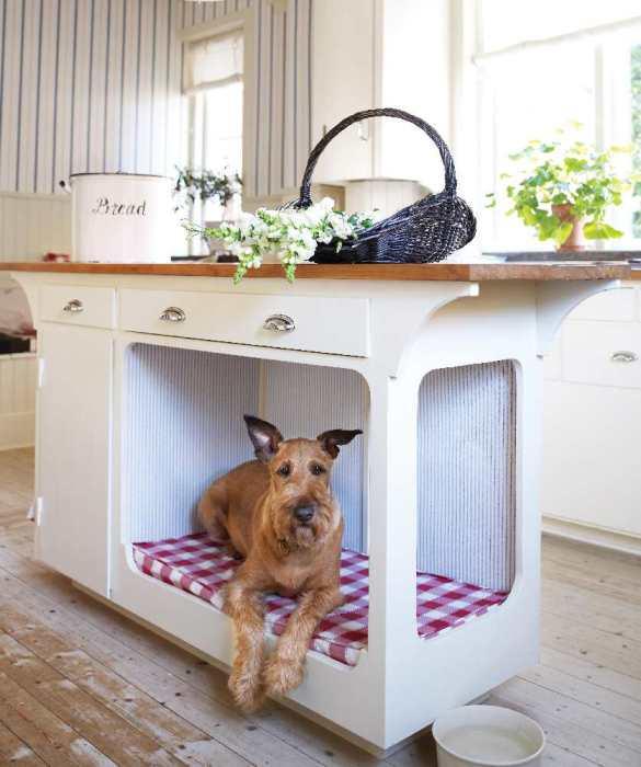 Укромное место в кухонном столе для собаки.