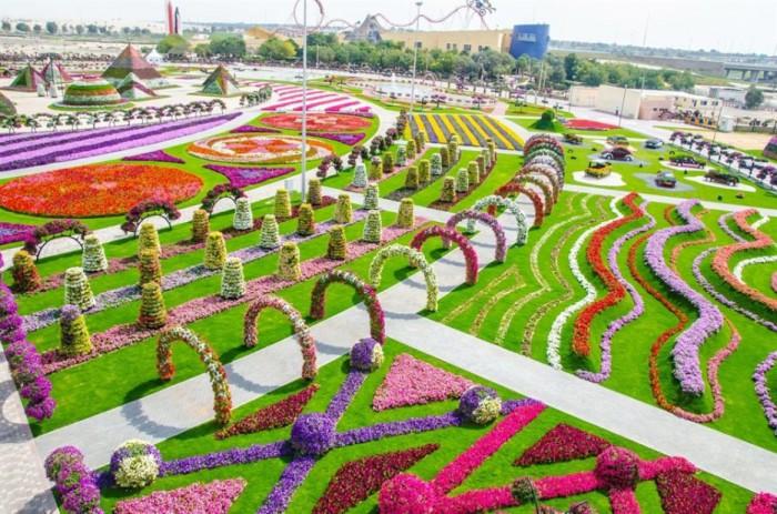 Чудо Сад в Дубай (Dubai Miracle Garden) - самый большой парк цветов в мире.