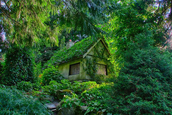 Дом, спрятанный в лесу.