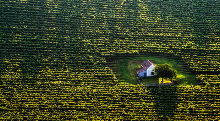 Крошечный дом в поле, Венгрия.
