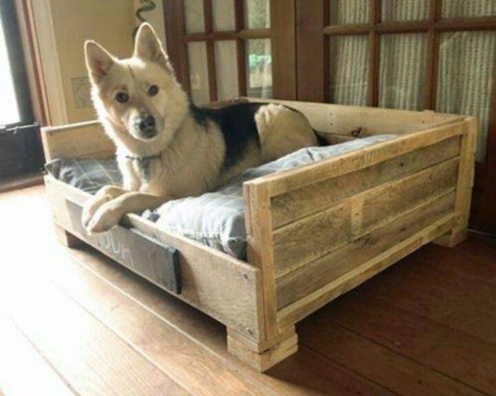 Уютная постель для семейного любимчика.