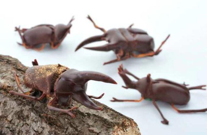 Сладкие насекомые.