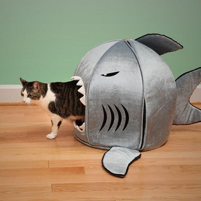 Забавный домик для кота в виде акулы.