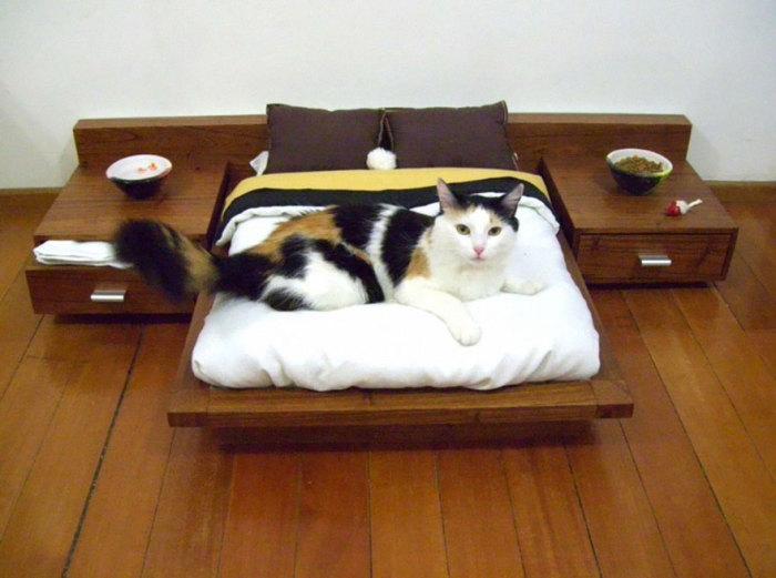 Настоящая постель для кота.