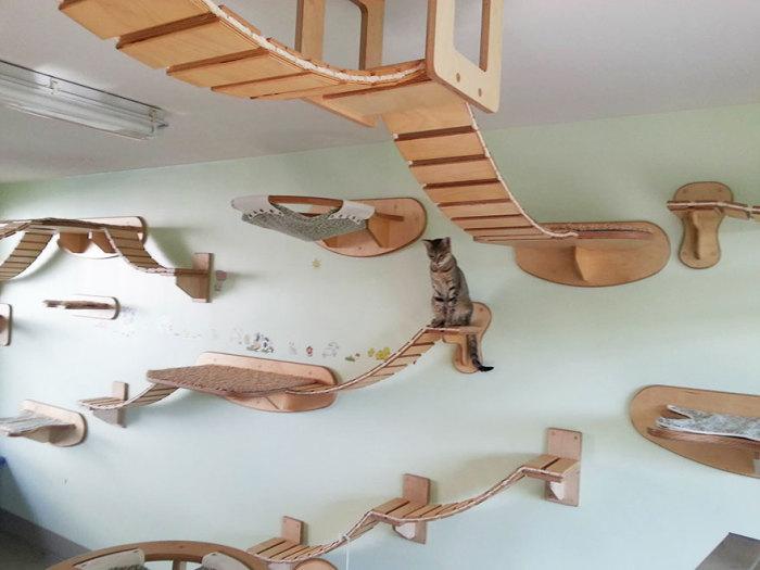 Кошачья стенка от Goldtatze.