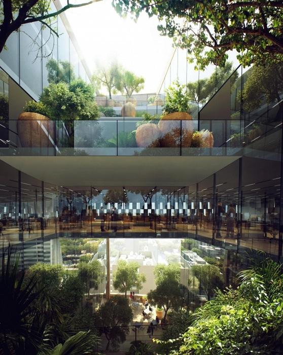 Террасы-сады на территории будущего банка.