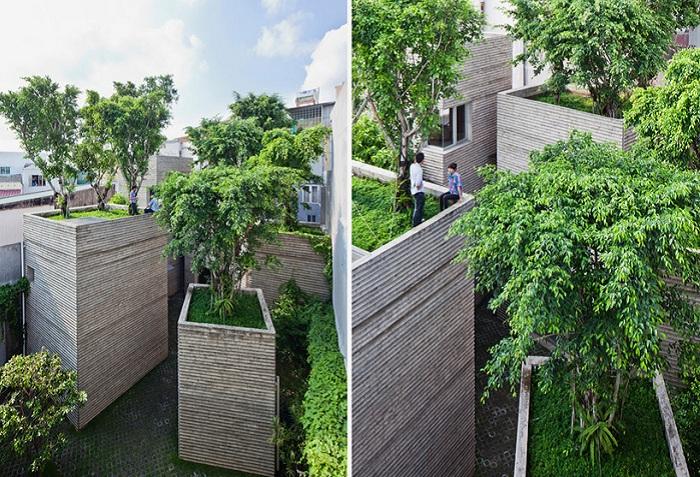 Деревья, высаженные на крыши.
