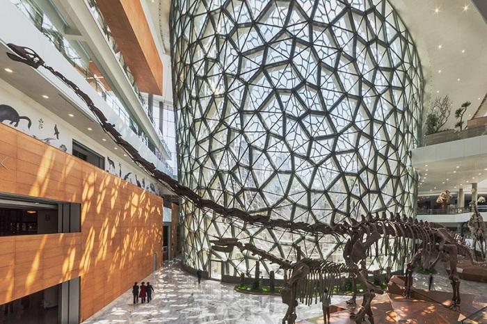 Shanghai Natural History Museum. Вид изнутри.
