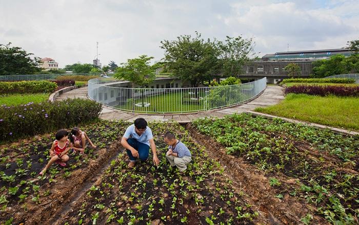 «Farming Kindergarten». Грядки расположены прямо на крыше здания.