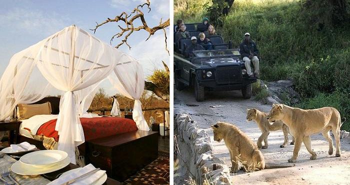 Lion Sands Game Reserve. По соседству с отелем бродят дикие животные.