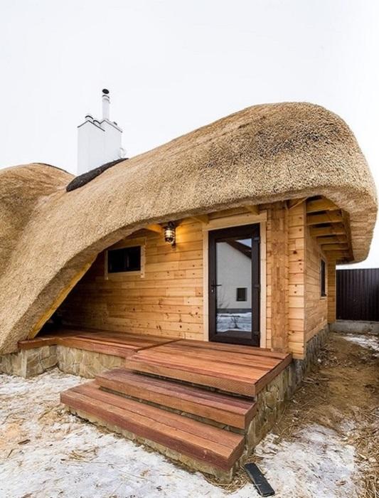 Баня, выполненная в архитектурном стиле «бионика».