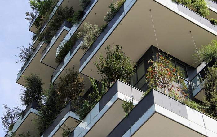 На балконы зданий высажено несколько тысяч растений.