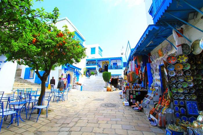 Сиди-Бу-Саид - живописный город в Тунисе.