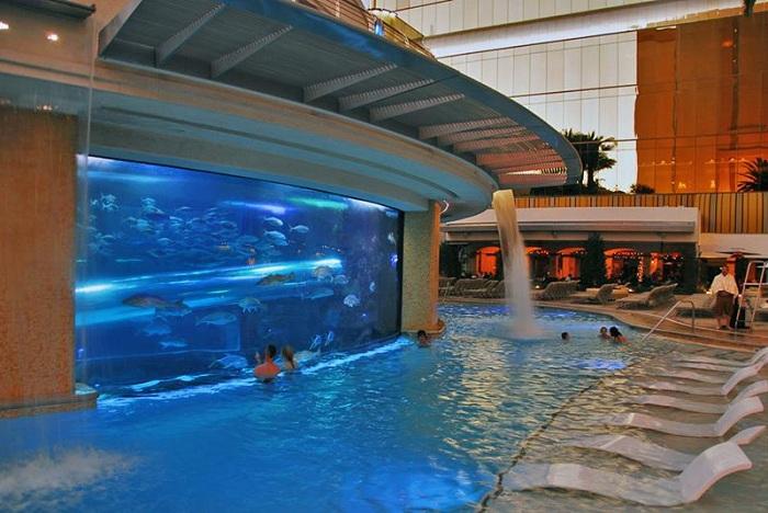 Уникальный бассейн, расположенный на территории отеля Golden Nugget.