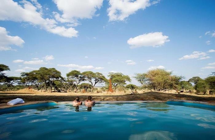 Бассейн, расположенный в национальном парке Tarangire National Park.