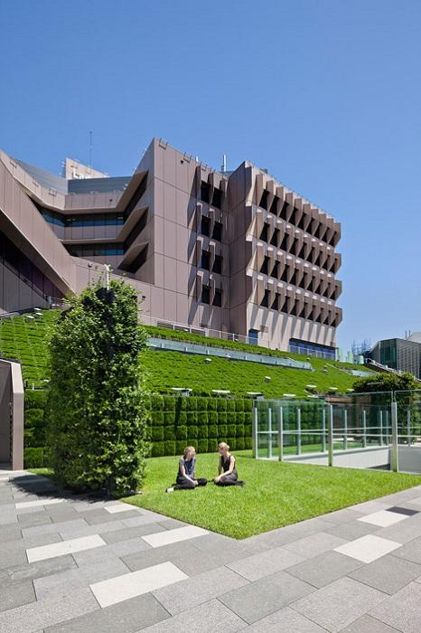 Внутренний двор больницы с зелеными насаждениями.