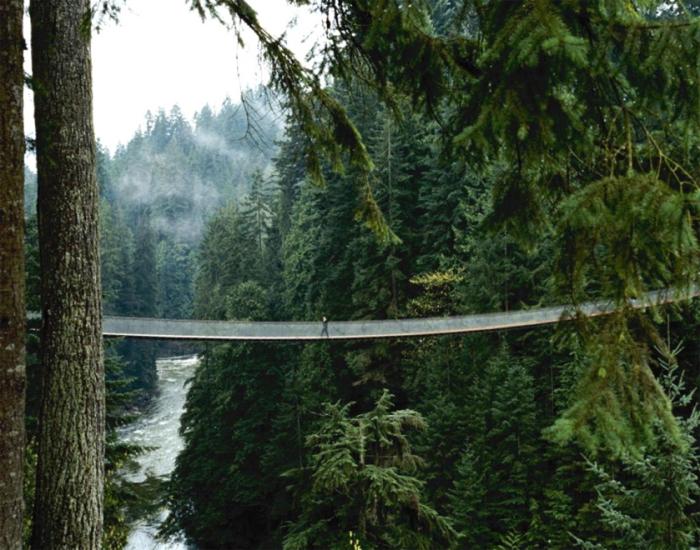 Висячий мост в парке Capilano Suspension Bridge Park.