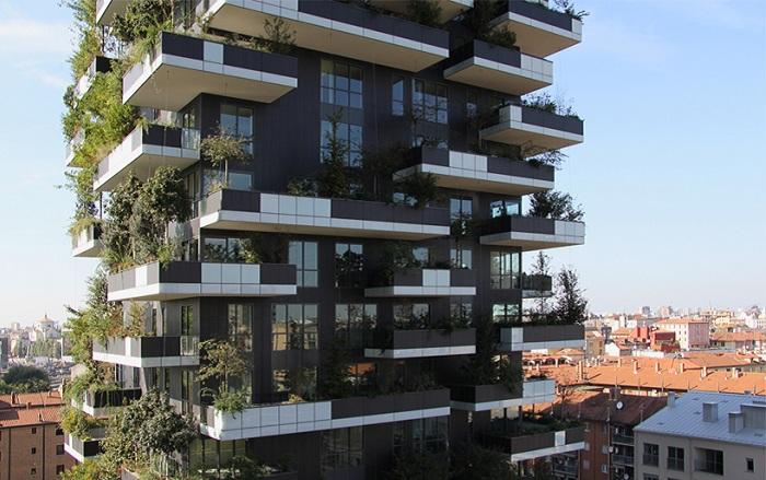 По всему периметру зданий высажены растения.