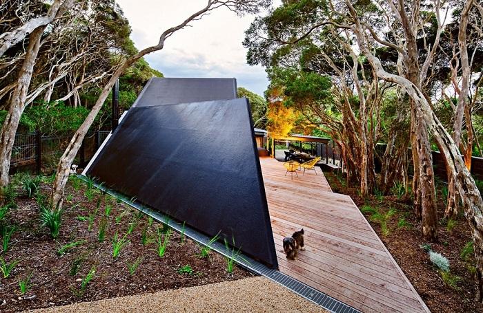Проект реконструкции дома фирмы Maddison Architects.