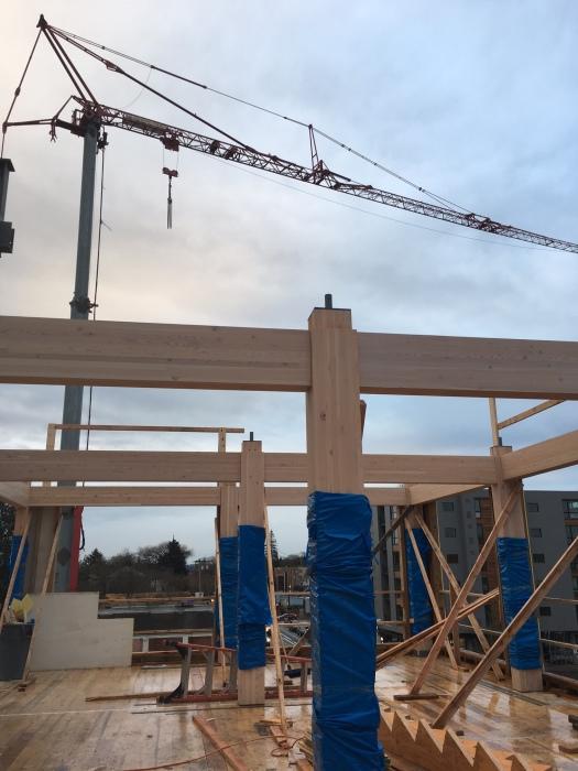 Строительство деревянной многоэтажки.