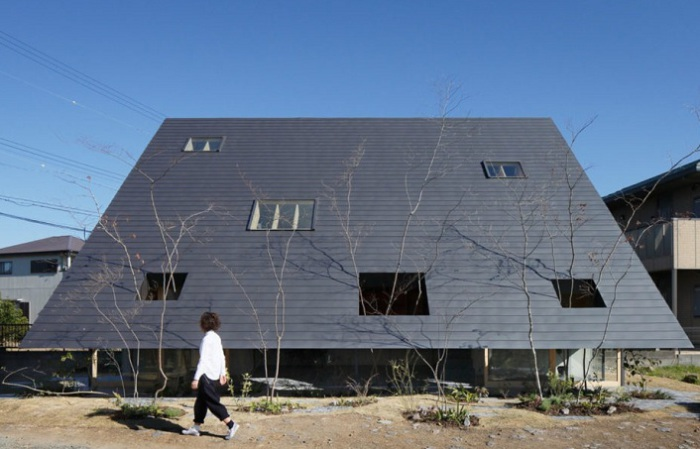 Eaves House - дом с односкатной крышей.