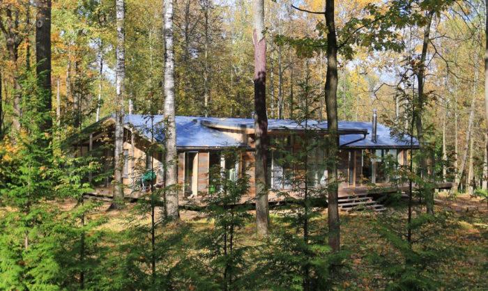 Дом в Пирогово от компании BIO Architects.
