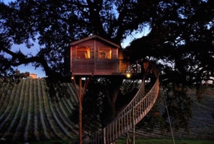 Дом на дереве. Агротуризм.