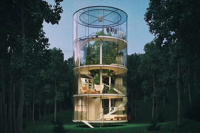 Стеклянный дом, построенный вокруг дерева. | Фото: moimir.org.
