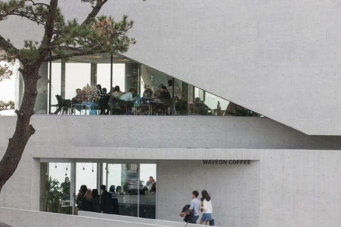 Кафе площадью 500 кв. метров.