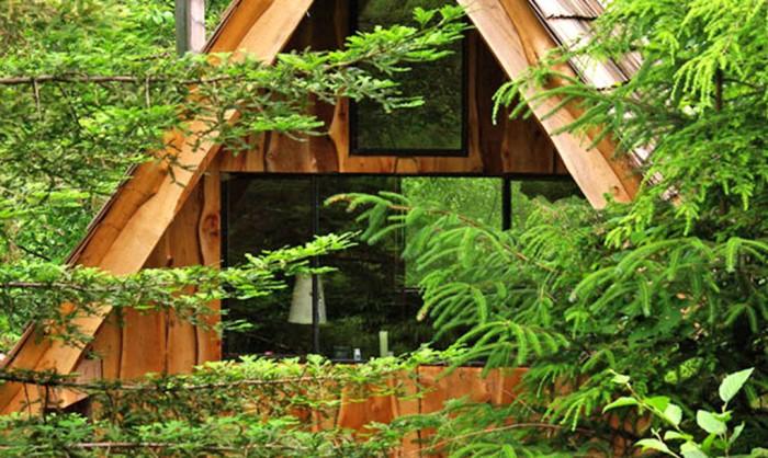 Japanese Forest House - домик площадью всего 20 кв. метров.