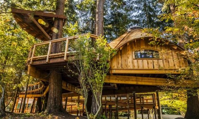 Офис компании Microsoft в домике на дереве.