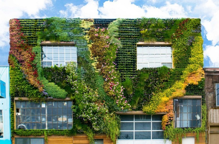 Вертикальный сад на фасаде здания.