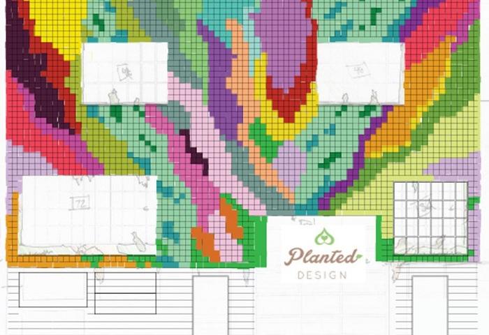 Схема расположения оттенков растений на «зеленом» фасаде.