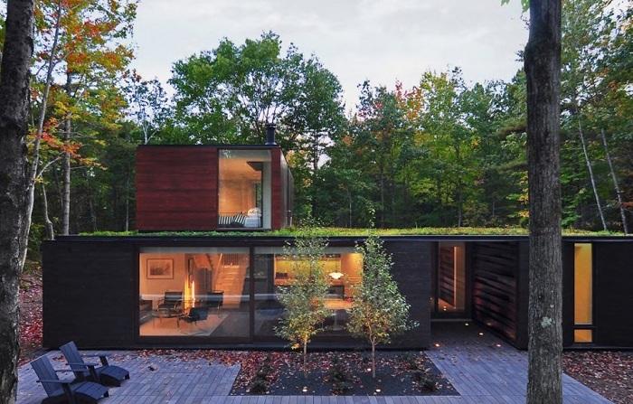 Pleated House - дом в лесной чаще.