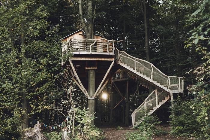 Robin's Nest Treehouse Hotel - эко-отель на дереве.