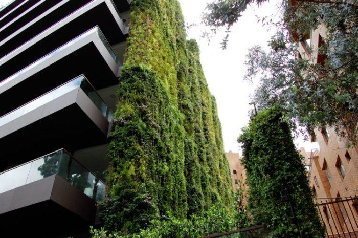 С улицы дом выглядит как стена из джунглей.