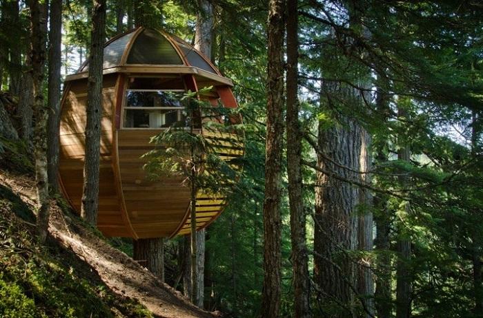 Hemloft - настоящий дом на дереве.