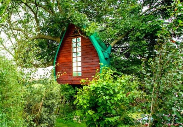 Tree Sparrow House - домик на дереве.