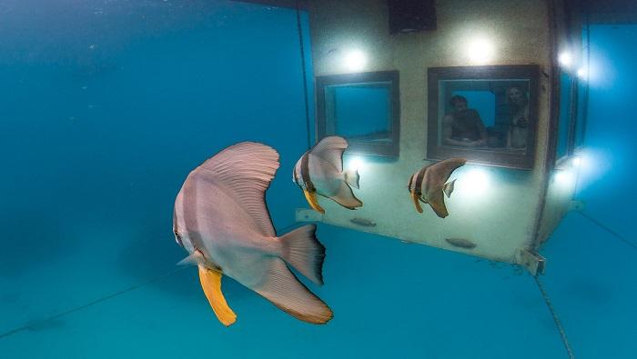 Комната под водой от Pemba Resort.
