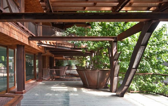 Растения на фасаде дома - естественная защита от прямых солнечных лучей.
