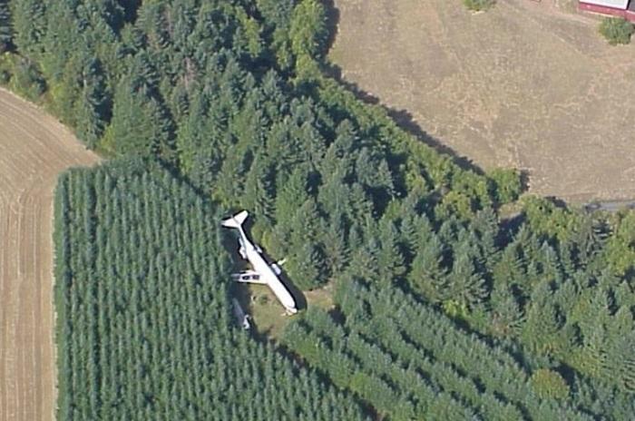 Дом-самолет. Вид сверху. | Фото:dailymail.co.uk.