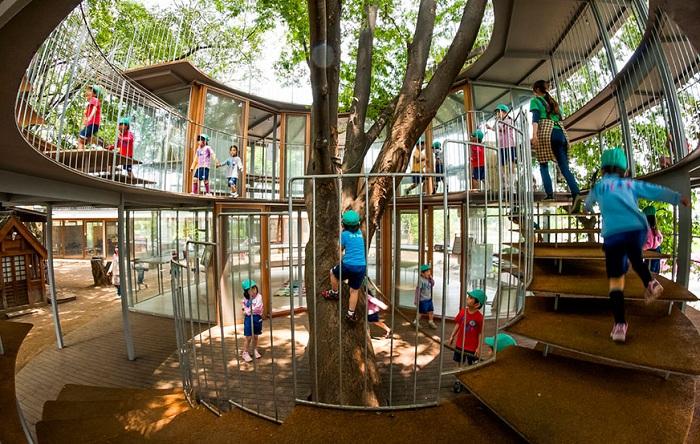 Детский сад в Японии, где дети лазают по деревьям.