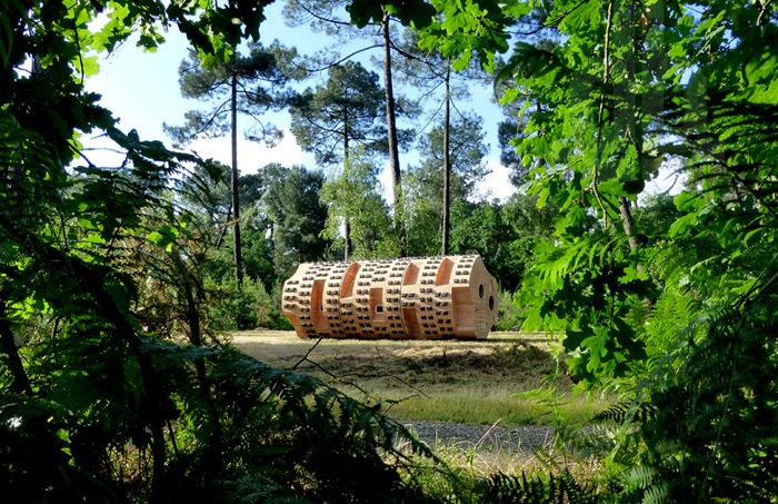 Деревянный приют, расположенный в лесопарковой зоне.