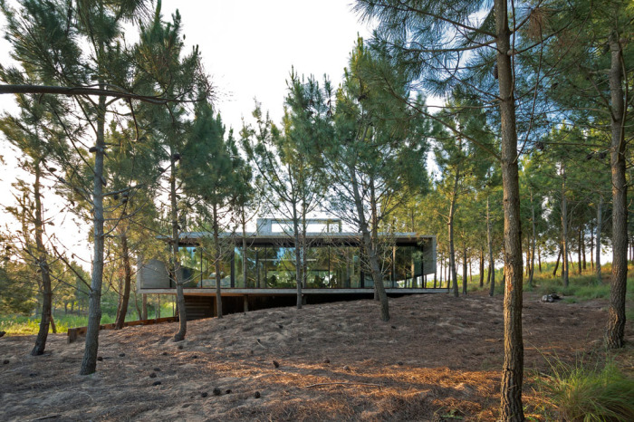 Загородный дом в живописно ландшафте.